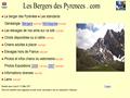 Chien berger des pyrenees poil long